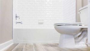 como limpiar el inodoro
